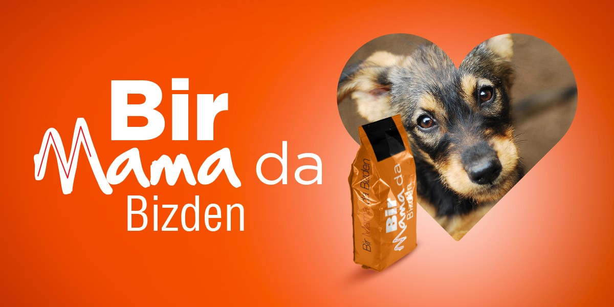 01 1200x600 hitclubspa sokak hayvanlari kampanyasi bir mama da bizden